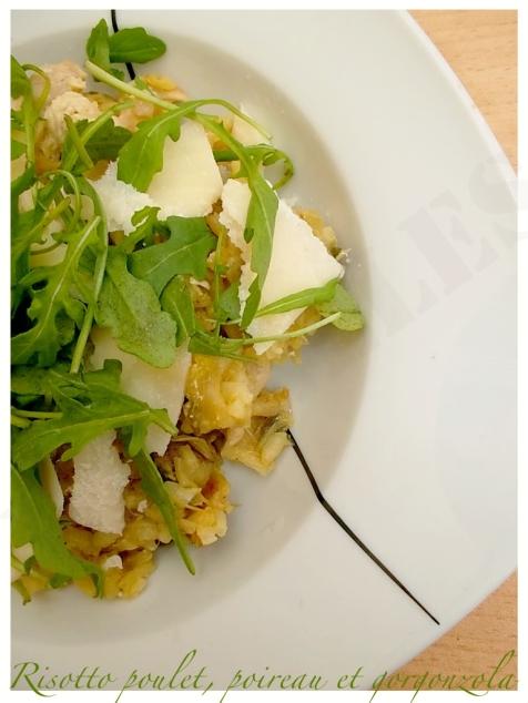 Risotto au poulet, poireau et gorgonzola4 copie
